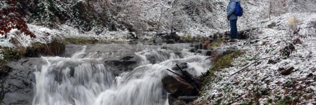 Valea Usturoi – Pleștioara – Șaua Dia – dealul Florilor, iarna