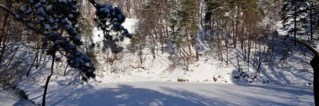 Din Baia Sprie la Lacul Albastru și pe Valea Borcutului, iarna