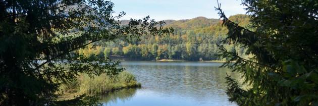 Baraj Firiza – Vidra – coada lacului